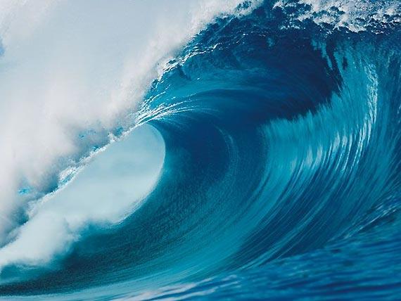 001-surf-new